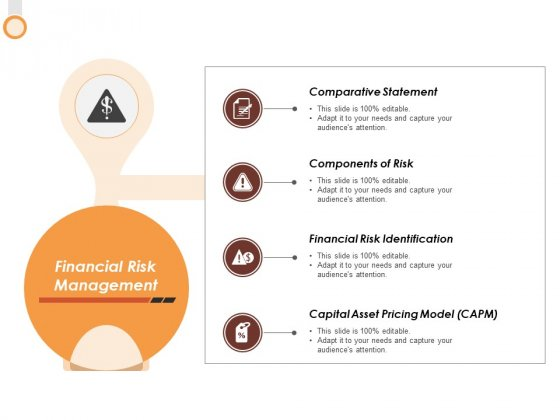 Financial Risk Management Ppt PowerPoint Presentation Gallery Format