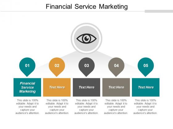 Financial Service Marketing Ppt PowerPoint Presentation Portfolio Ideas Cpb