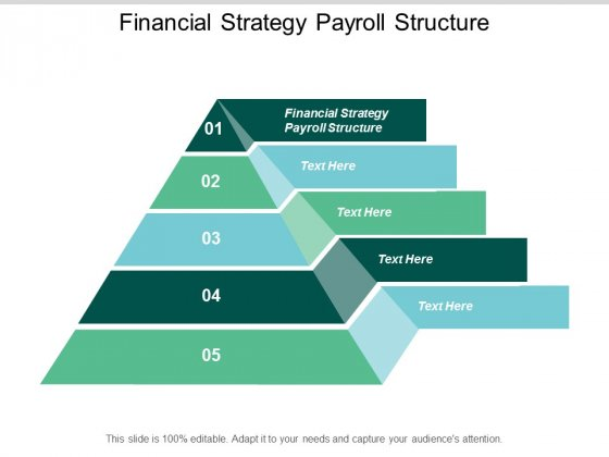 Financial Strategy Payroll Structure Ppt PowerPoint Presentation Show Format Cpb