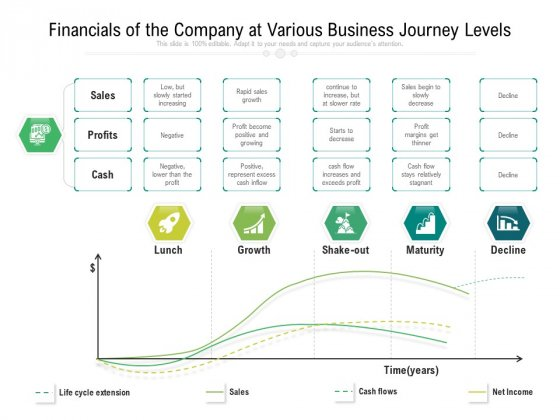 Financials Of The Company At Various Business Journey Levels Ppt PowerPoint Presentation File Portrait PDF