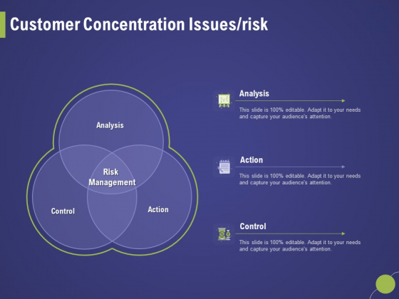 Firm Capability Assessment Customer Concentration Issues Risk Ppt Ideas Sample PDF
