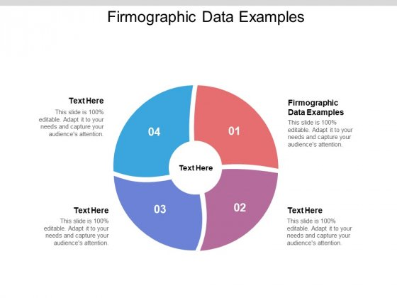 Firmographic Data Examples Ppt PowerPoint Presentation Slides Shapes Cpb Pdf