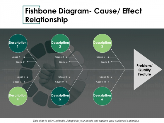 Fishbone Diagram Cause Effect Relationship Ppt PowerPoint Presentation Infographics Slideshow