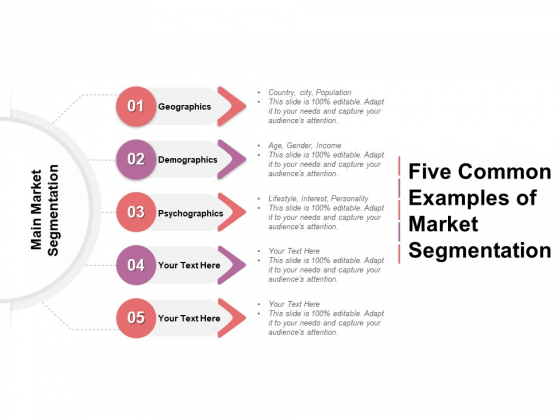 Five Common Examples Of Market Segmentation Ppt PowerPoint Presentation Professional Graphics Pictures PDF