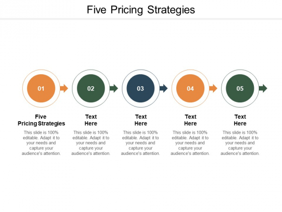 Five Pricing Strategies Ppt PowerPoint Presentation Outline Tips Cpb