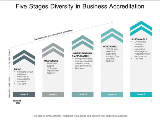 Five Stages Diversity In Business Accreditation Ppt Powerpoint Presentation Infographic Template Objects