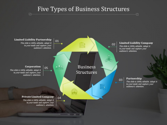 Five Types Of Business Structures Ppt PowerPoint Presentation Ideas Skills