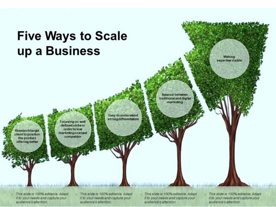 Five Ways To Scale Up A Business Ppt PowerPoint Presentation Ideas Elements