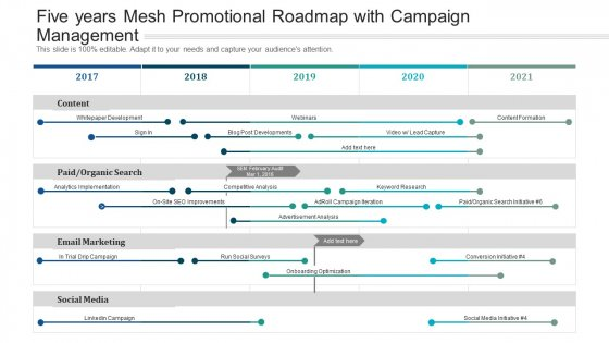 Five Years Mesh Promotional Roadmap With Campaign Management Information
