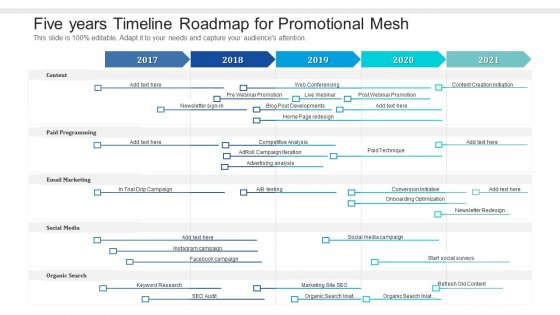 Five Years Timeline Roadmap For Promotional Mesh Guidelines