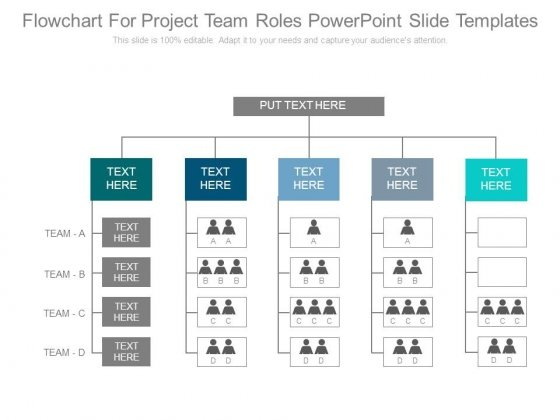 Flowchart For Project Team Roles Powerpoint Slide Templates ...