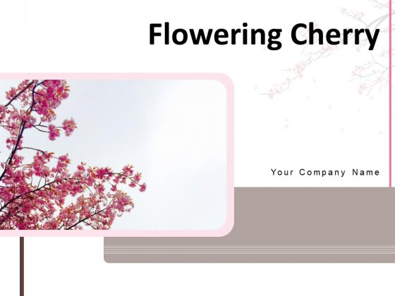 Flowering Cherry Bunch Flowers Single Flower Ppt PowerPoint Presentation Complete Deck