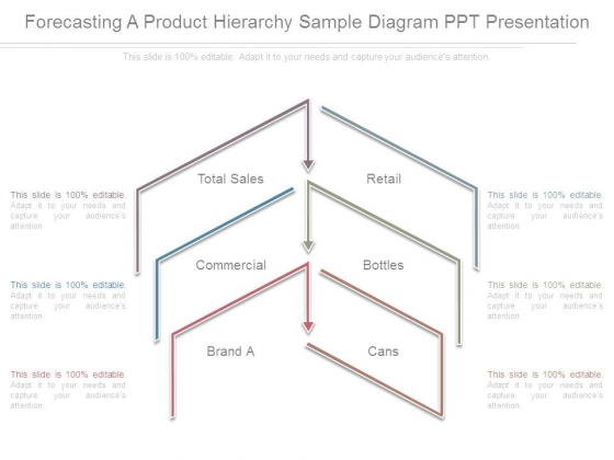 Forecasting A Product Hierarchy Sample Diagram Ppt Presentation