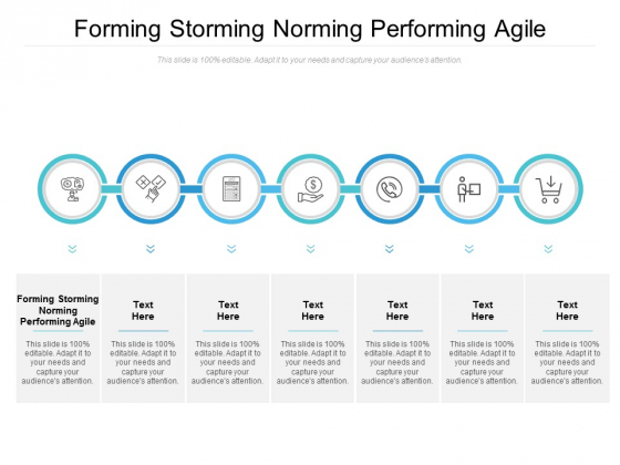 Forming Storming Norming Performing Agile Ppt PowerPoint Presentation Professional Layout Cpb