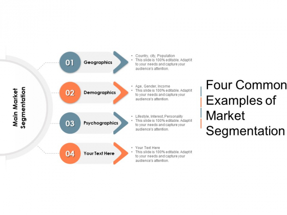 Four Common Examples Of Market Segmentation Ppt PowerPoint Presentation Infographics Templates PDF