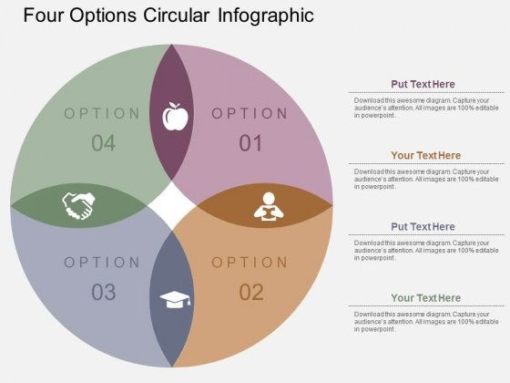 Four Options Circular Infographic Powerpoint Templates