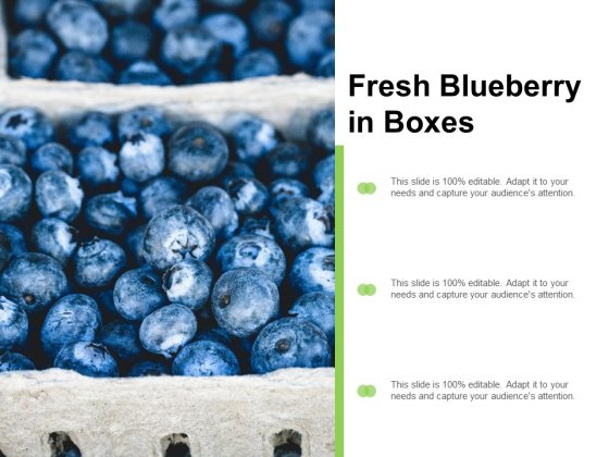 Fresh Blueberry In Boxes Ppt Powerpoint Presentation Layouts Visuals