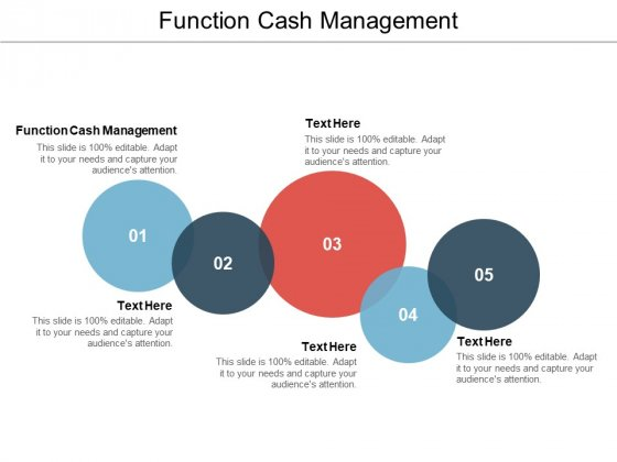 Function Cash Management Ppt PowerPoint Presentation Professional Graphics Download