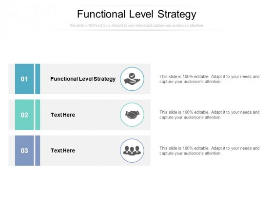 Functional Level Strategy Ppt PowerPoint Presentation Infographics Example Cpb