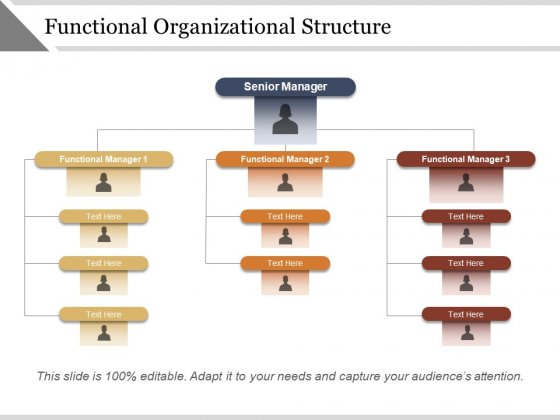 Functional Organizational Structure Ppt PowerPoint Presentation Layouts Tips
