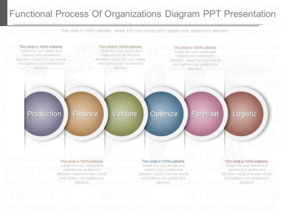 Functional Process Of Organizations Diagram Ppt Presentation