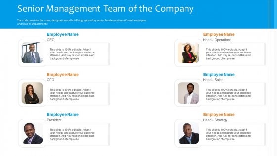 Funding Pitch To Raise Funds From PE Senior Management Team Of The Company Structure PDF
