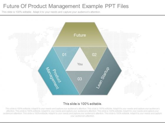 Future Of Product Management Example Ppt Files