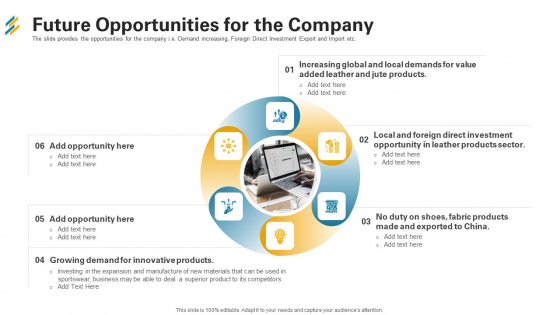 Future Opportunities For The Company Ppt Infographics Layouts PDF