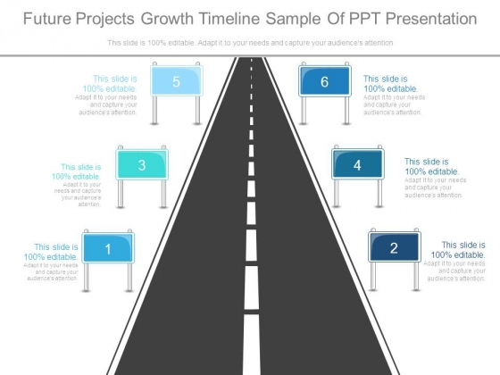 Future Projects Growth Timeline Sample Of Ppt Presentation