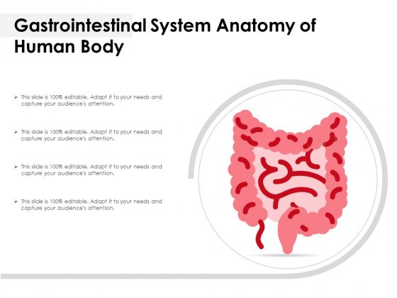 Gastrointestinal System Anatomy Of Human Body Ppt PowerPoint Presentation Icon Infographics PDF