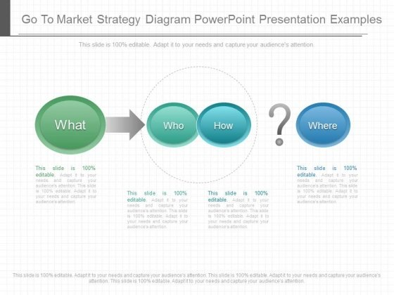 Go To Market Strategy Diagram Powerpoint Presentation Examples
