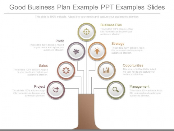 good business plan example ppt examples slides powerpoint templates