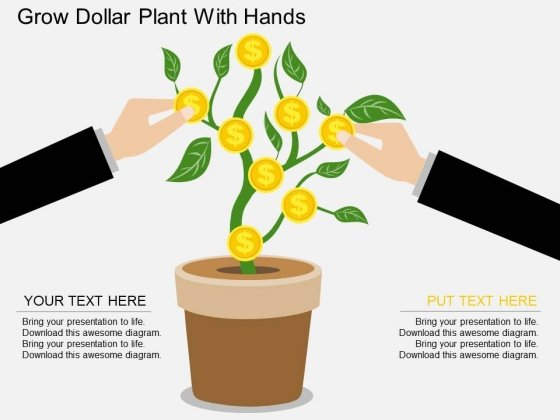 Grow Dollar Plant With Hands Powerpoint Template