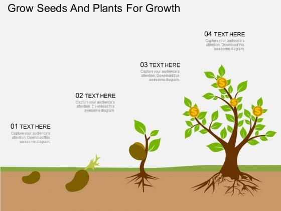Grow Seeds And Plants For Growth Powerpoint Template