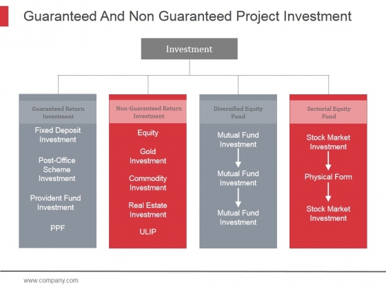 Guaranteed And Non Guaranteed Project Investment Ppt PowerPoint Presentation Topics
