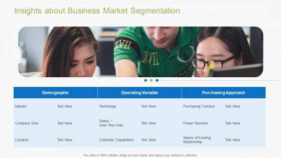 Guidebook For Business Insights About Business Market Segmentation Pictures PDF