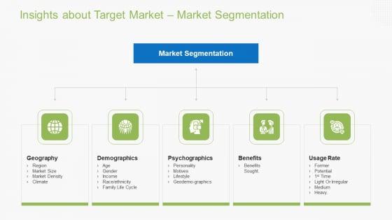 Guidebook For Business Insights About Target Market Market Segmentation Formats PDF