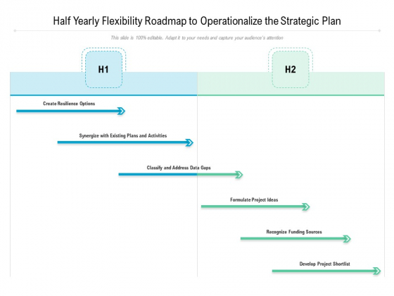 Half Yearly Flexibility Roadmap To Operationalize The Strategic Plan Background