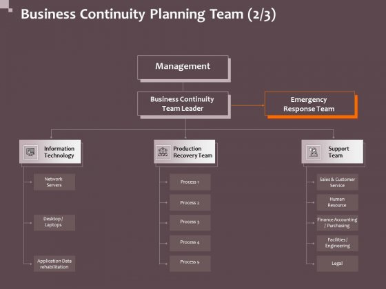 Hazard Administration Business Continuity Planning Team Network Ppt Professional Influencers PDF