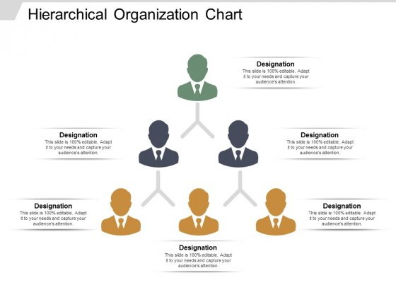 Hierarchical Organization Chart Ppt PowerPoint Presentation Ideas Skills