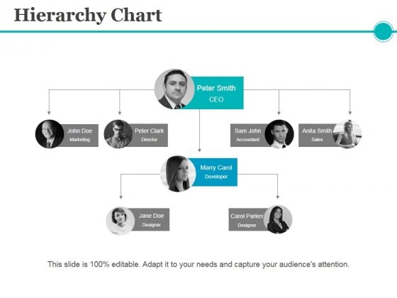 Hierarchy Chart Ppt PowerPoint Presentation Model Graphics Pictures