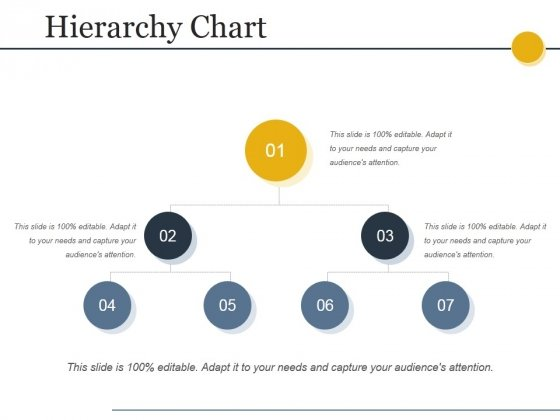 Hierarchy Chart Ppt PowerPoint Presentation Styles Graphics Download