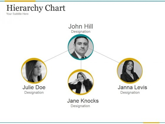 Hierarchy Chart Ppt PowerPoint Presentation Visuals
