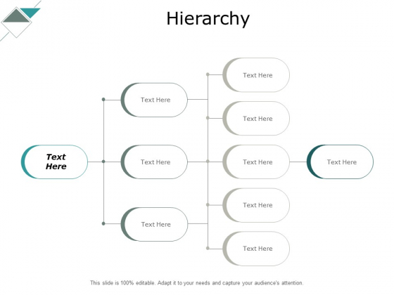 Hierarchy Management Ppt PowerPoint Presentation Portfolio Designs