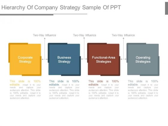 Hierarchy Of Company Strategy Sample Of Ppt