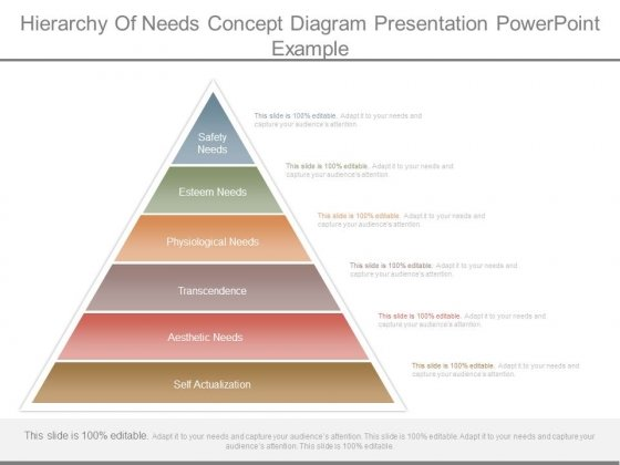 Hierarchy Of Needs Concept Diagram Presentation Powerpoint Example