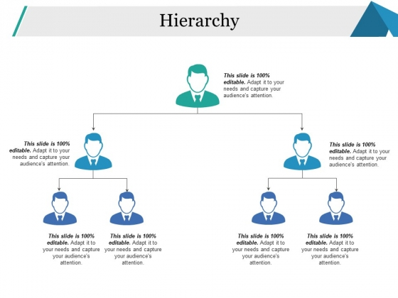 Hierarchy Ppt PowerPoint Presentation Gallery Example