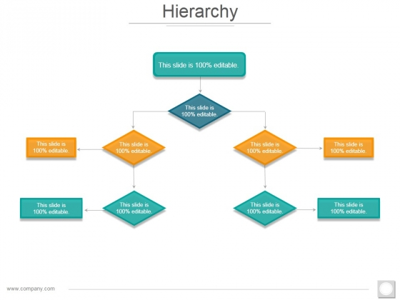 Hierarchy Ppt PowerPoint Presentation Infographic Template Examples
