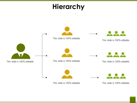 Hierarchy Ppt PowerPoint Presentation Infographics Deck
