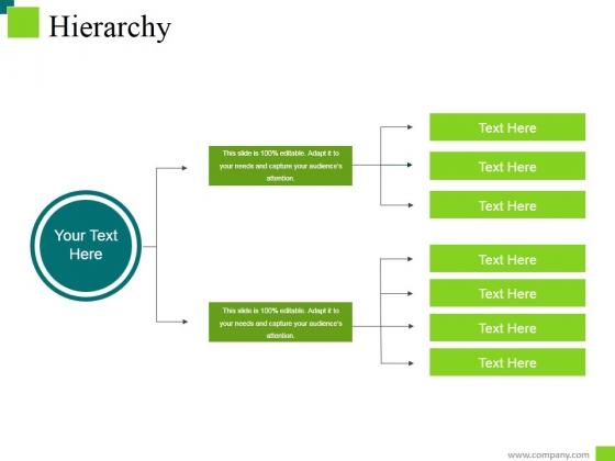 Hierarchy Ppt PowerPoint Presentation Model Portfolio